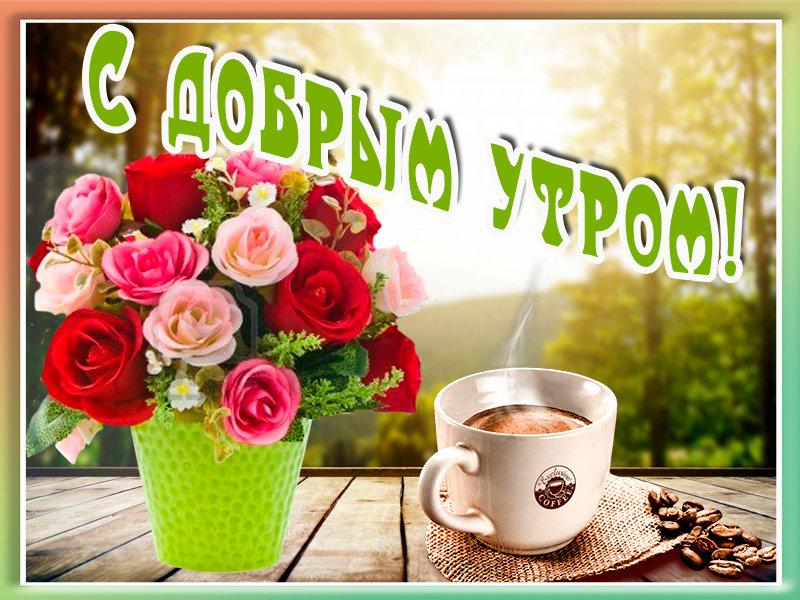 Доброе утро, не забудь про хорошее настроение - Доброе утро